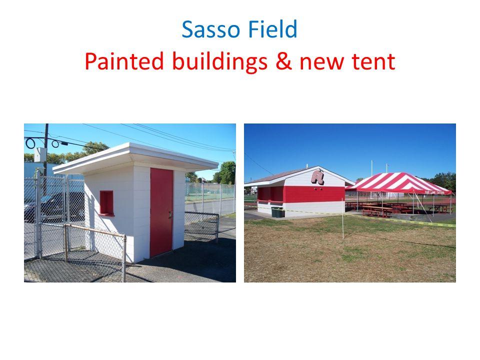 Sasso Field Lightning Detector