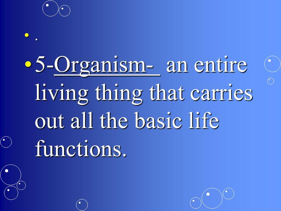 Organism Organ system Organ Tissue Cells