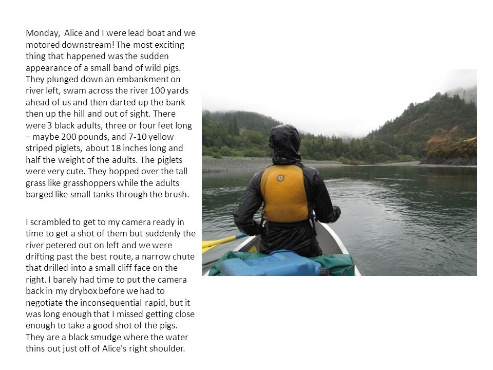 Monday, Alice and I were lead boat and we motored downstream! The most exciting thing that happened was the sudden appearance of a small band of wild