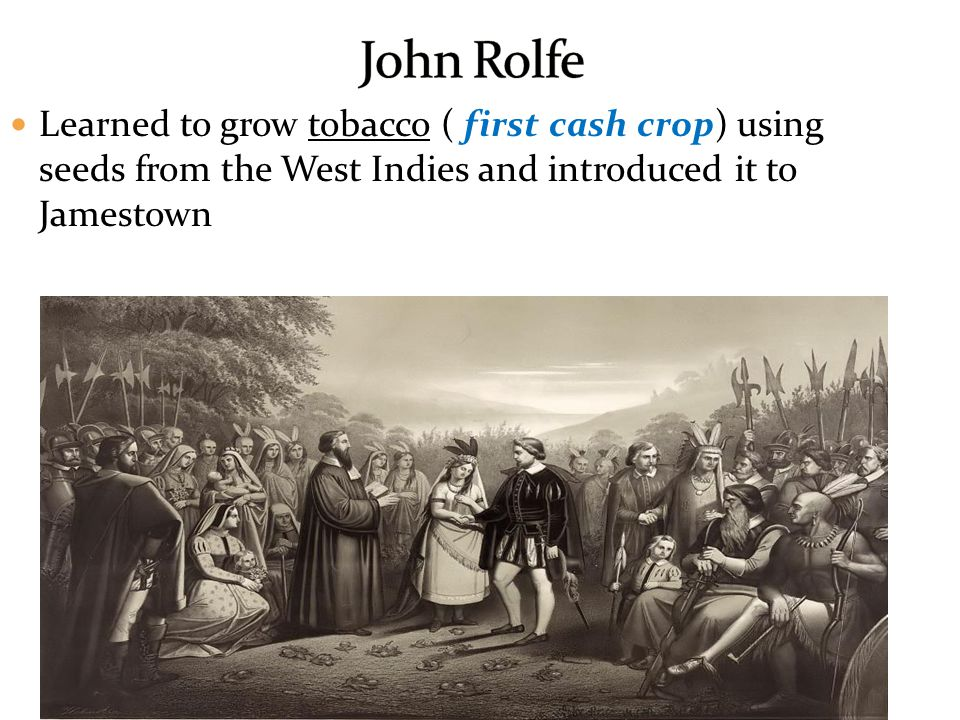 Learned to grow tobacco ( first cash crop) using seeds from the West Indies and introduced it to Jamestown