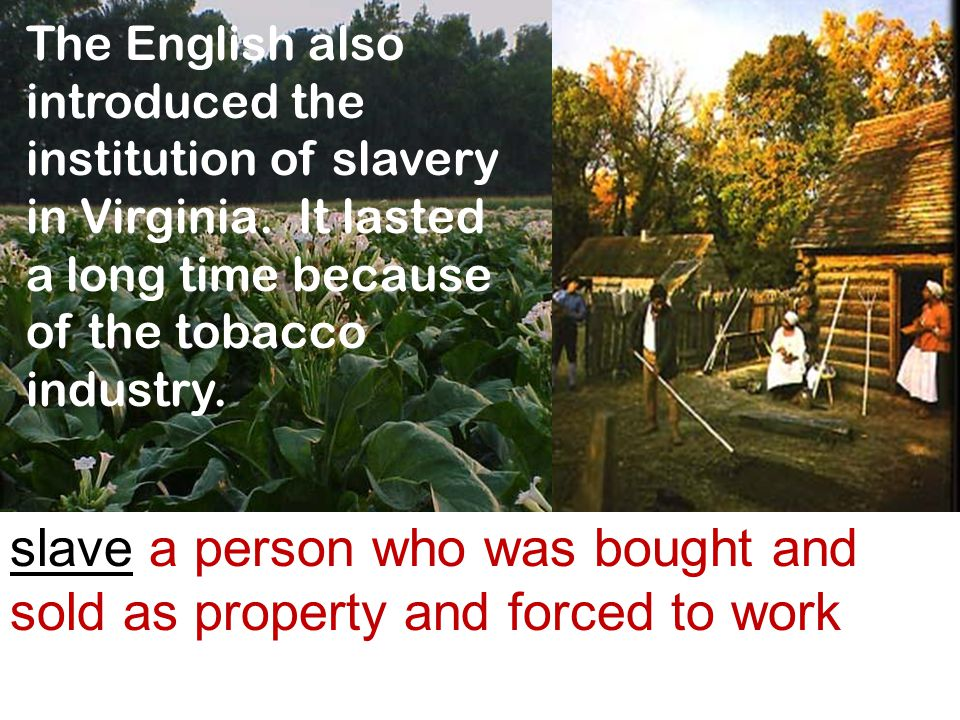 The English also introduced the institution of slavery in Virginia. It lasted a long time because of the tobacco industry. slave a person who was boug