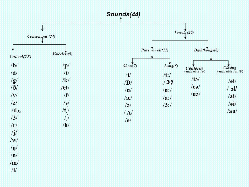 Sounds(44) Consonants (24) Voiced(15) /b/ /d/ /g/ / ð/ /v/ /z/ /d /3/ /r/ /j/ /w/ /ŋ/ /n/ /m/ /l/ Voiceless(9) 3/ /p/ /t/ /k/ /Ө/ /f/ /s/ /t/ // /h/ V