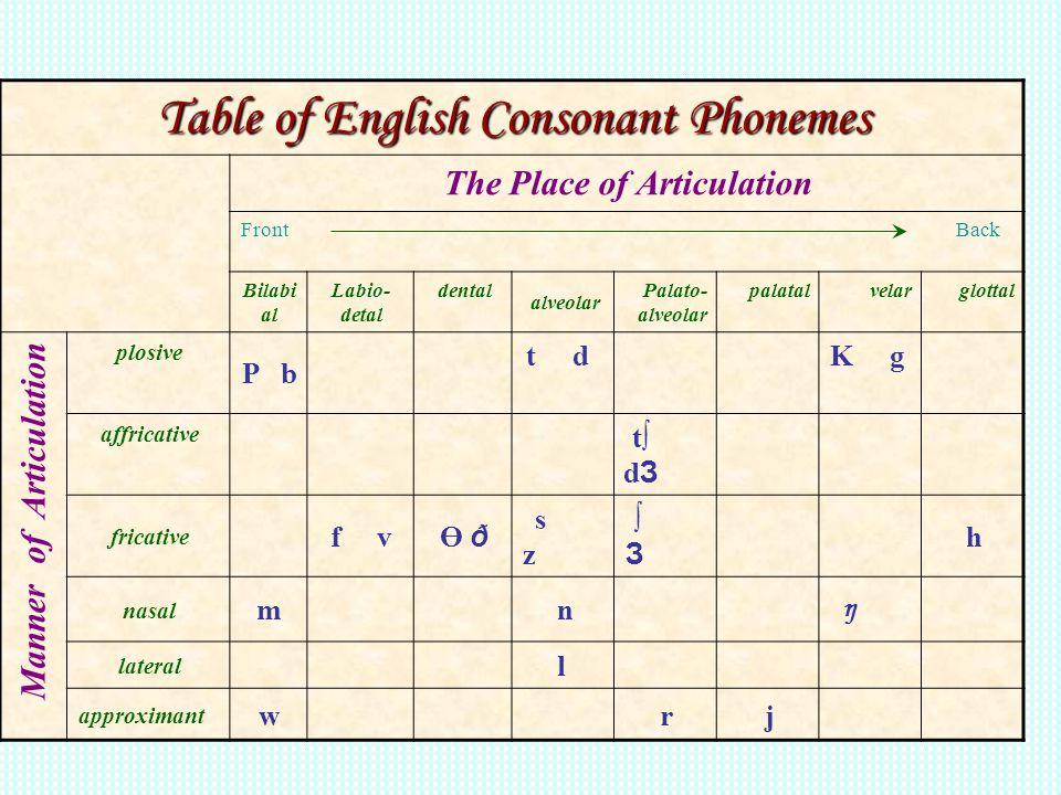 Table of English Consonant Phonemes The Place of Articulation Front Back glottalvelarpalatalPalato- alveolar alveolar dentalLabio- detal Bilabi al K g
