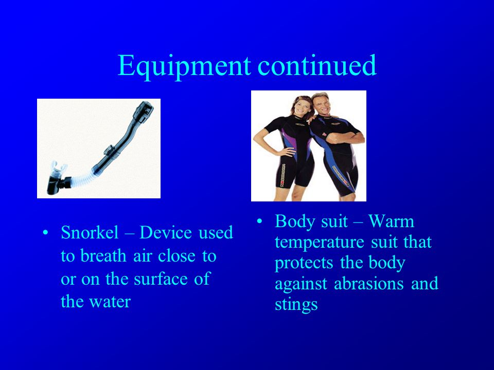 Equipment continued Snorkel – Device used to breath air close to or on the surface of the water Body suit – Warm temperature suit that protects the body against abrasions and stings