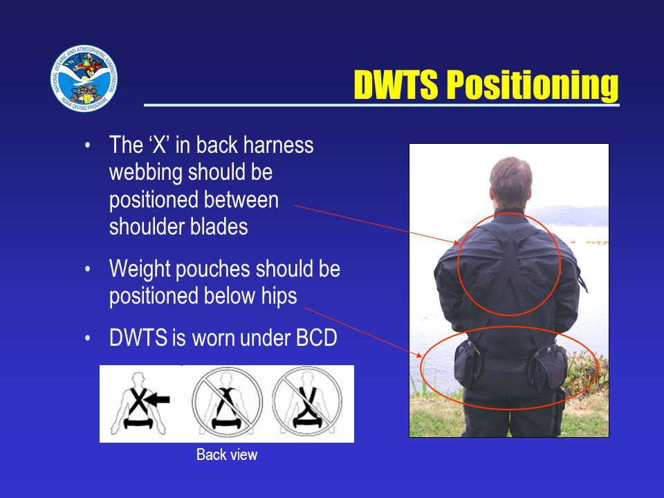 The X in back harness webbing should be positioned between shoulder blades Weight pouches should be positioned below hips DWTS is worn under BCD DWTS Positioning Back view