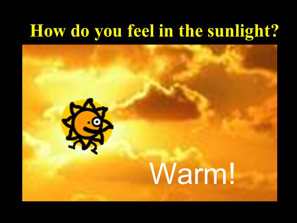 How do you feel in the sunlight Warm!