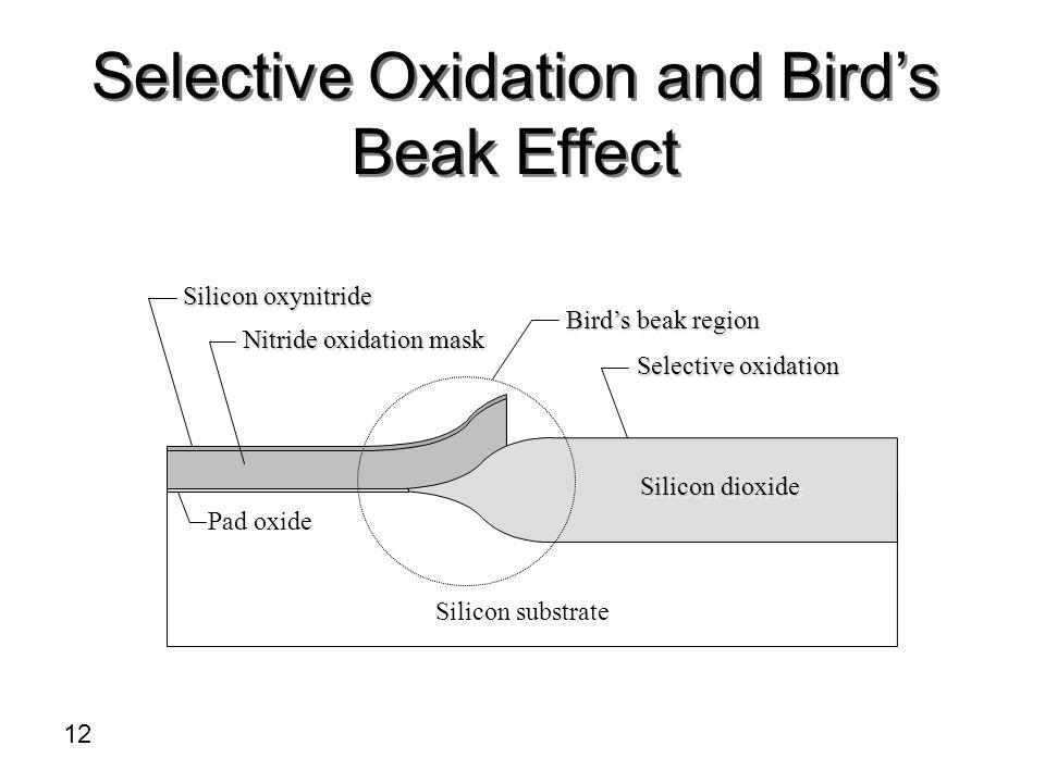 Silicon oxynitride Nitride oxidation mask Birds beak region Selective oxidation Pad oxide Silicon substrate Silicon dioxide Selective Oxidation and Bi