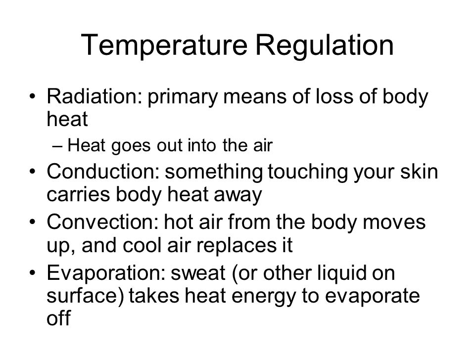 Temperature Regulation Radiation: primary means of loss of body heat –Heat goes out into the air Conduction: something touching your skin carries body heat away Convection: hot air from the body moves up, and cool air replaces it Evaporation: sweat (or other liquid on surface) takes heat energy to evaporate off