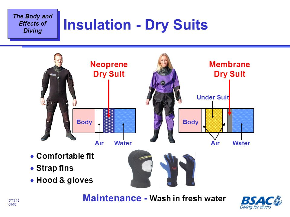 The Body and Effects of Diving OT3 15 08/02 Insulation - Dry Suits !Comfortable fit !Strap fins !Hood & gloves Maintenance - Wash in fresh water Membr