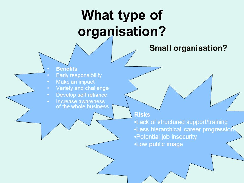 What type of organisation? Benefits Early responsibility Make an impact Variety and challenge Develop self-reliance Increase awareness of the whole bu