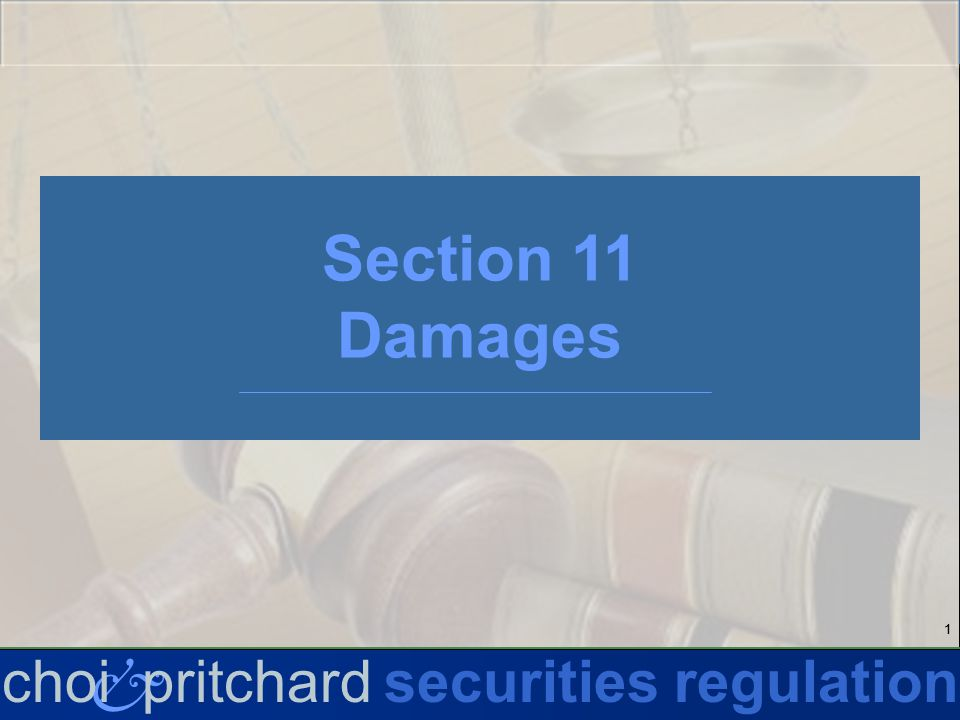 22 & choi pritchardsecurities regulation Section 11 Liability Akerman v.