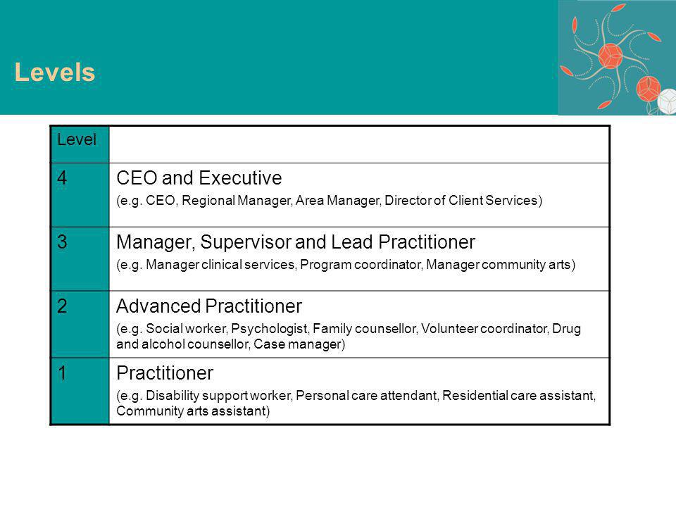 Levels Level 4CEO and Executive (e.g.