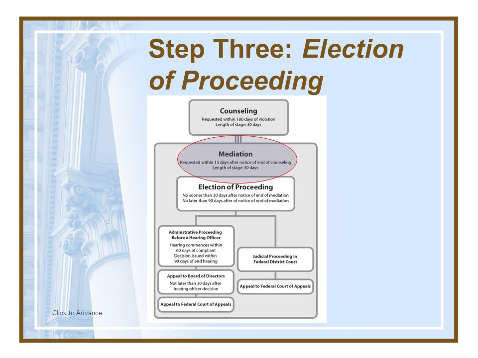 Step Three: Election of Proceeding Click to Advance