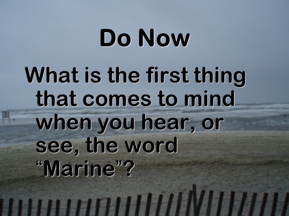 Do Now What is the first thing that comes to mind when you hear, or see, the wordMarine?