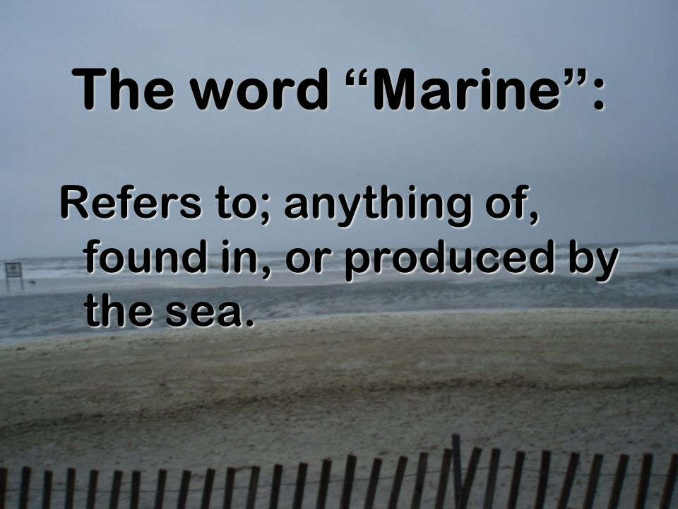 The word Marine: Refers to; anything of, found in, or produced by the sea.