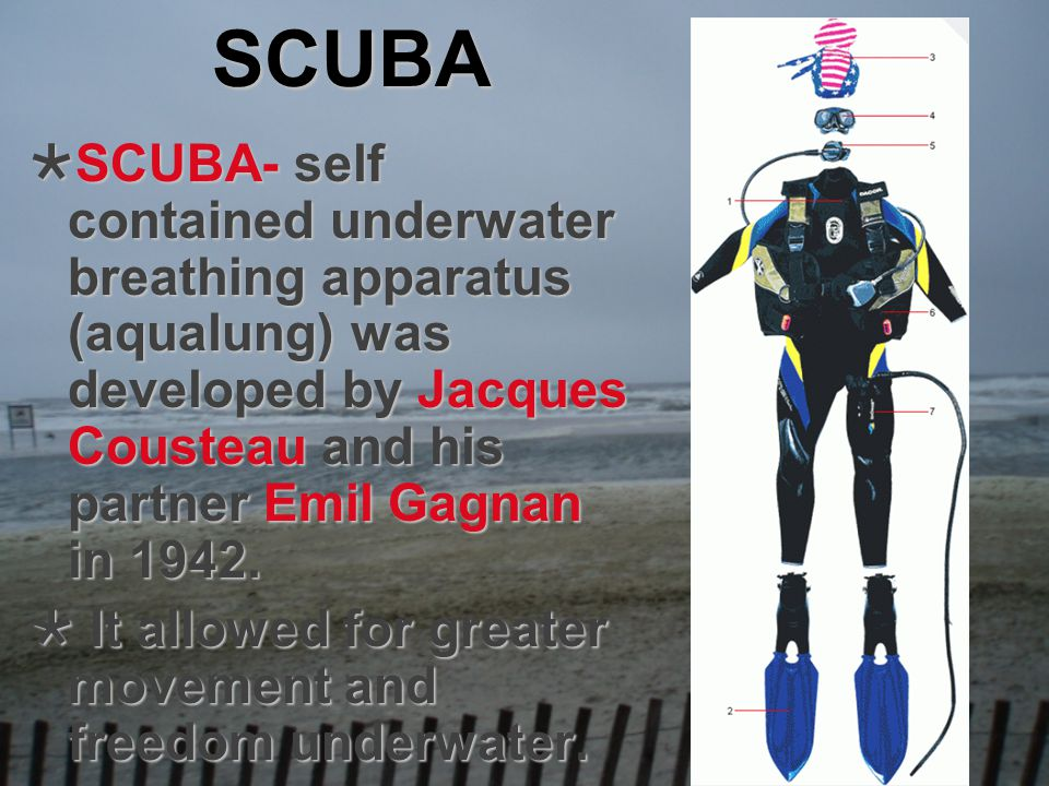 SCUBA SCUBA- self contained underwater breathing apparatus (aqualung) was developed by Jacques Cousteau and his partner Emil Gagnan in 1942. SCUBA- se