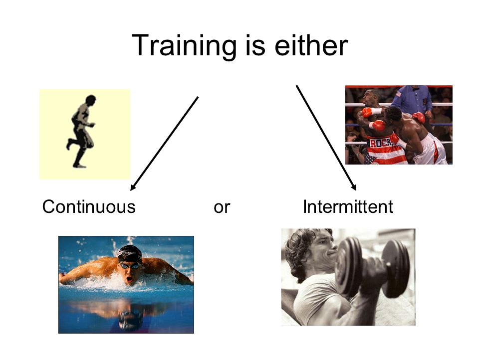 CIRCUIT TRAINING KEY TERMS Stations Muscles Cardiovascular system Wide range of activities Time Repetitions Adapted