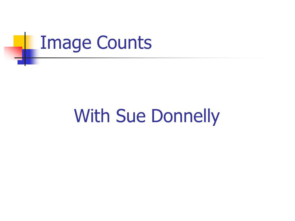 Image Counts With Sue Donnelly