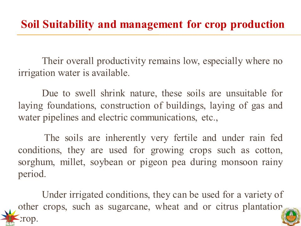 Soil Suitability and management for crop production Their overall productivity remains low, especially where no irrigation water is available. Due to