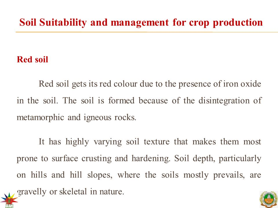 Soil Suitability and management for crop production Red soil Red soil gets its red colour due to the presence of iron oxide in the soil.
