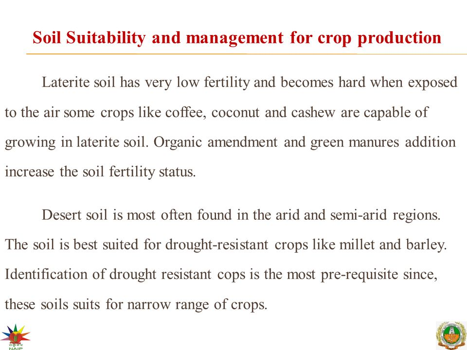 Soil Suitability and management for crop production Laterite soil has very low fertility and becomes hard when exposed to the air some crops like coffee, coconut and cashew are capable of growing in laterite soil.