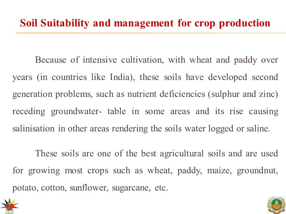 Soil Suitability and management for crop production Because of intensive cultivation, with wheat and paddy over years (in countries like India), these soils have developed second generation problems, such as nutrient deficiencies (sulphur and zinc) receding groundwater- table in some areas and its rise causing salinisation in other areas rendering the soils water logged or saline.