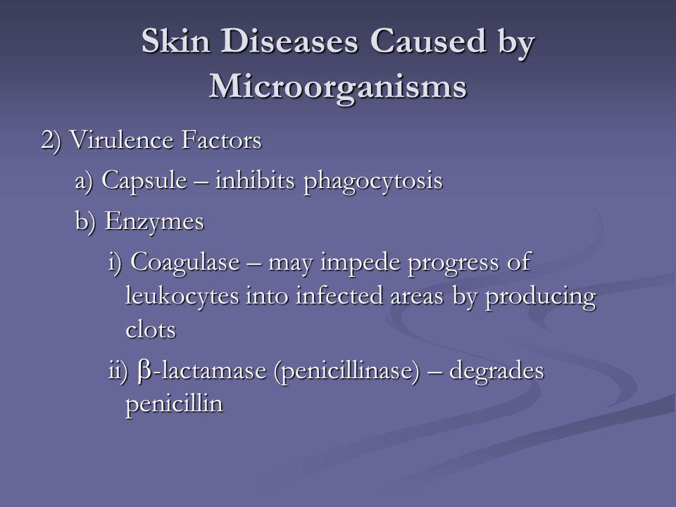 Skin Diseases Caused by Microorganisms 2) Virulence Factors a) Capsule – inhibits phagocytosis b) Enzymes i) Coagulase – may impede progress of leukoc
