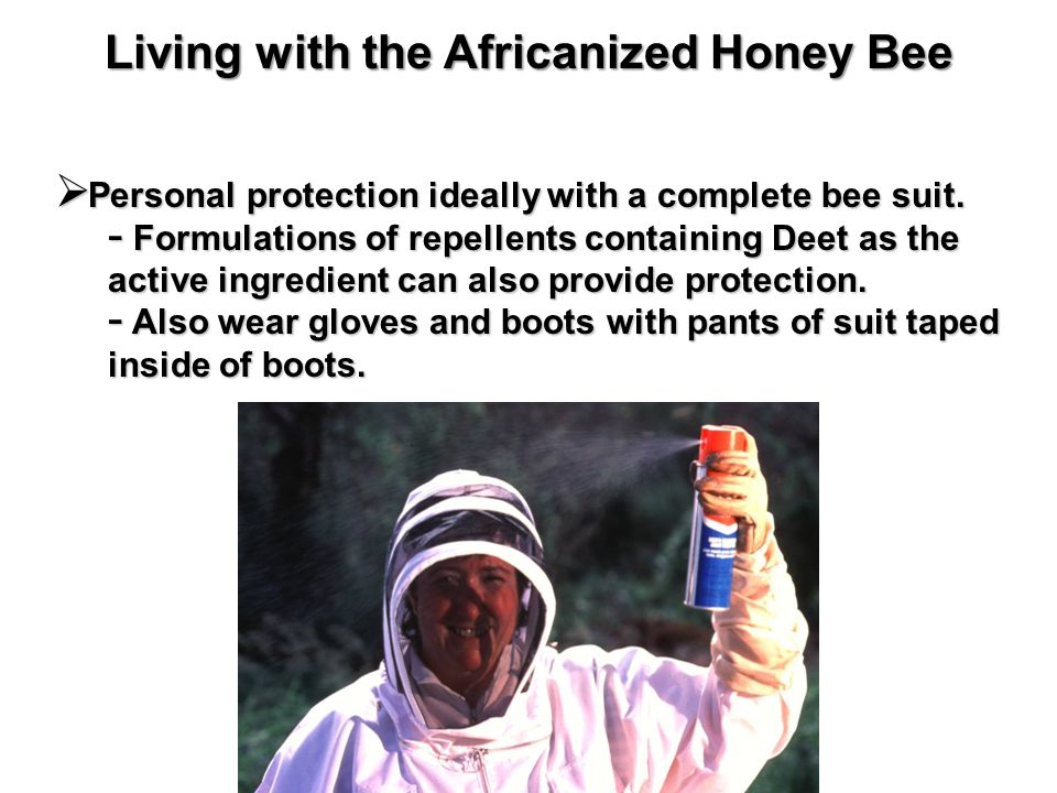 Personal protection ideally with a complete bee suit.