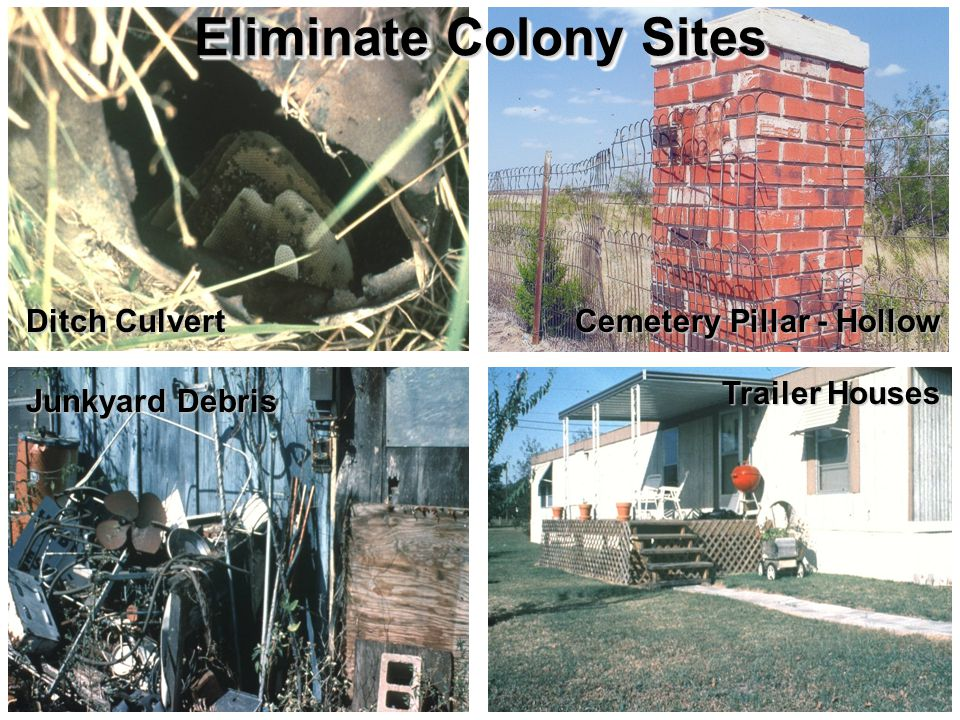 Ditch Culvert Cemetery Pillar - Hollow Junkyard Debris Trailer Houses Eliminate Colony Sites