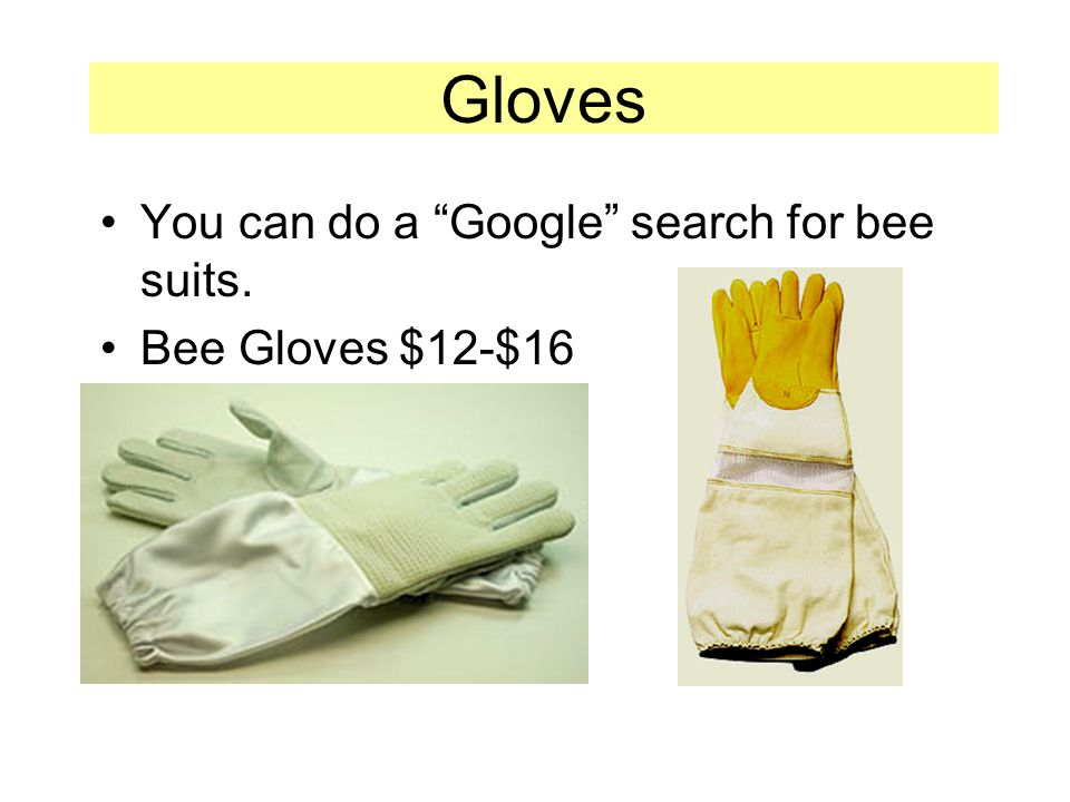 You can do a Google search for bee suits. Bee Gloves $12-$16 Gloves