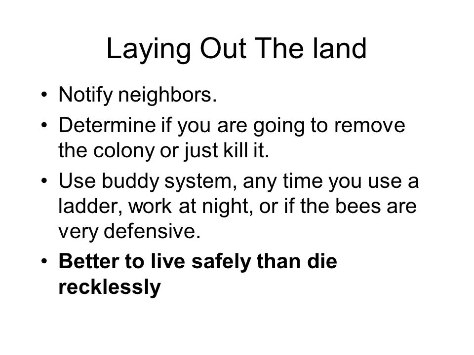 Laying Out The land Notify neighbors.