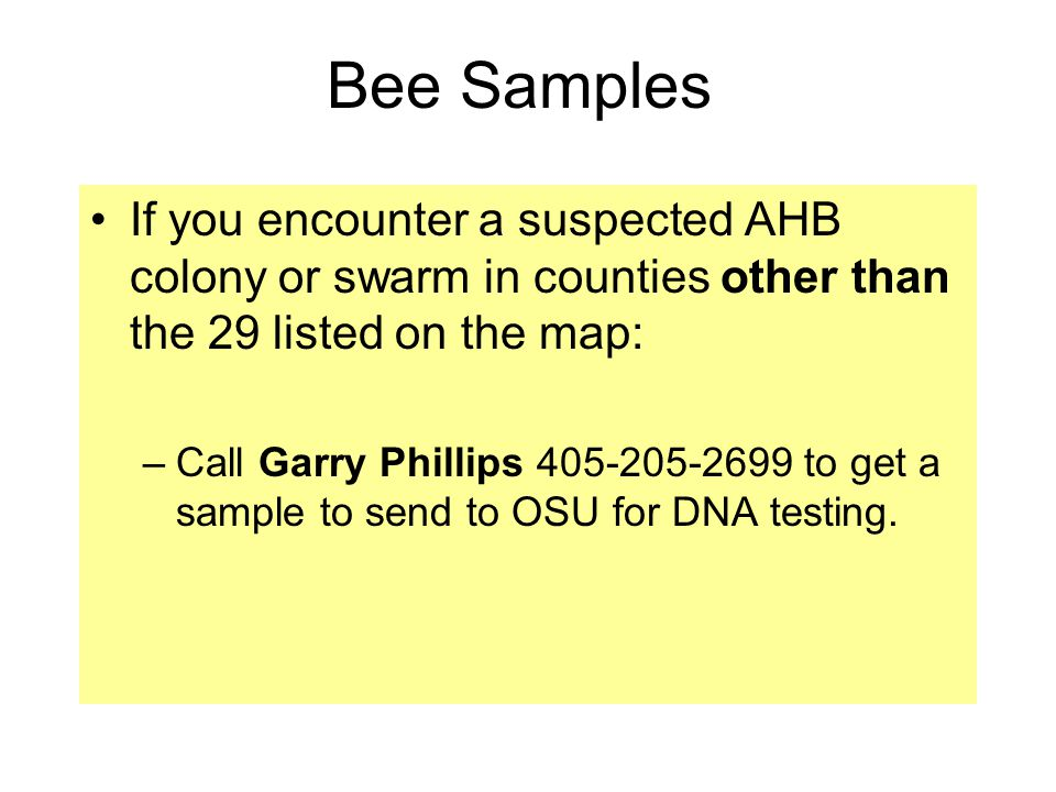 Bee Samples If you encounter a suspected AHB colony or swarm in counties other than the 29 listed on the map: –Call Garry Phillips 405-205-2699 to get a sample to send to OSU for DNA testing.