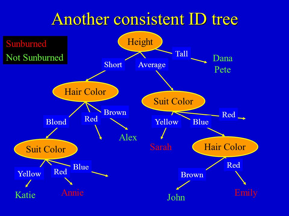 Another consistent ID tree Katie Hair Color Alex Blond Red Brown Sunburned Not Sunburned Hair Color Emily Red Suit Color Height Annie Short Suit Color
