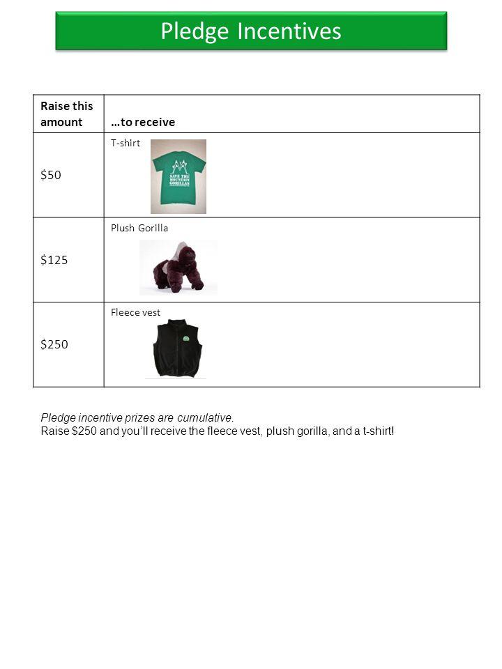 Pledge Incentives Raise this amount…to receive $50 T-shirt $125 Plush Gorilla $250 Fleece vest Pledge incentive prizes are cumulative. Raise $250 and