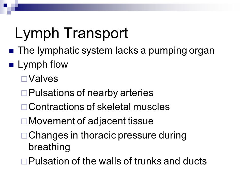 Lymph Transport The lymphatic system lacks a pumping organ Lymph flow Valves Pulsations of nearby arteries Contractions of skeletal muscles Movement o