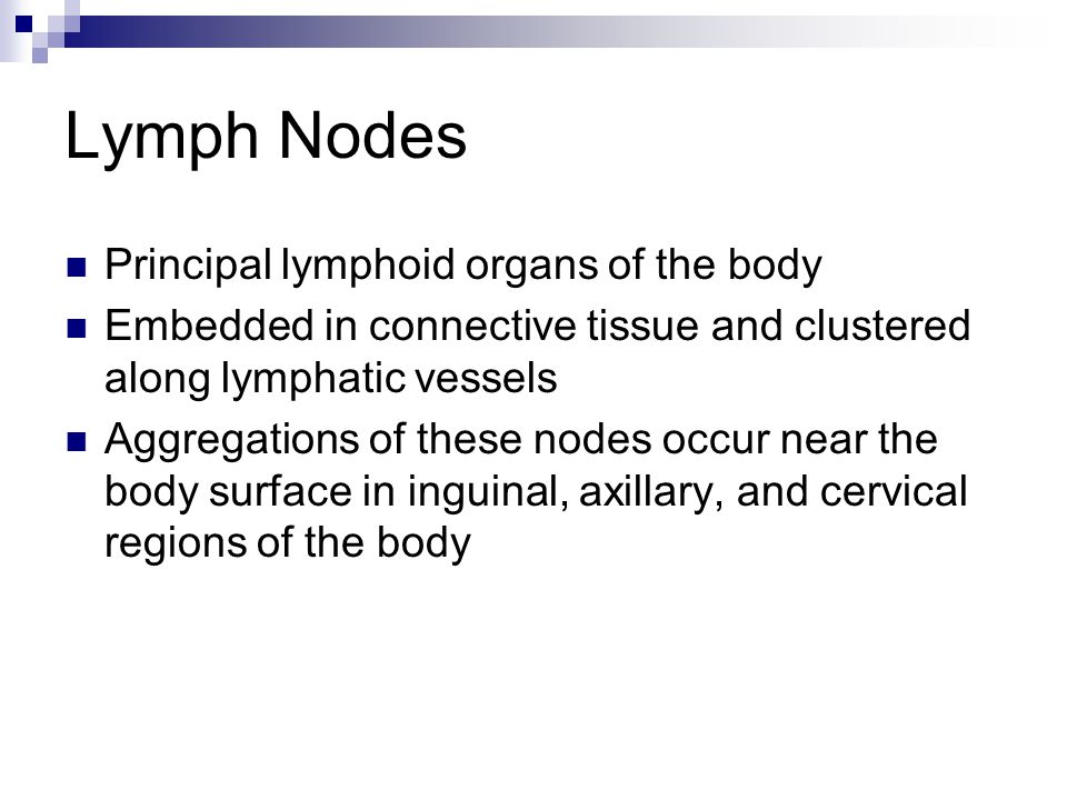Lymph Nodes Principal lymphoid organs of the body Embedded in connective tissue and clustered along lymphatic vessels Aggregations of these nodes occu