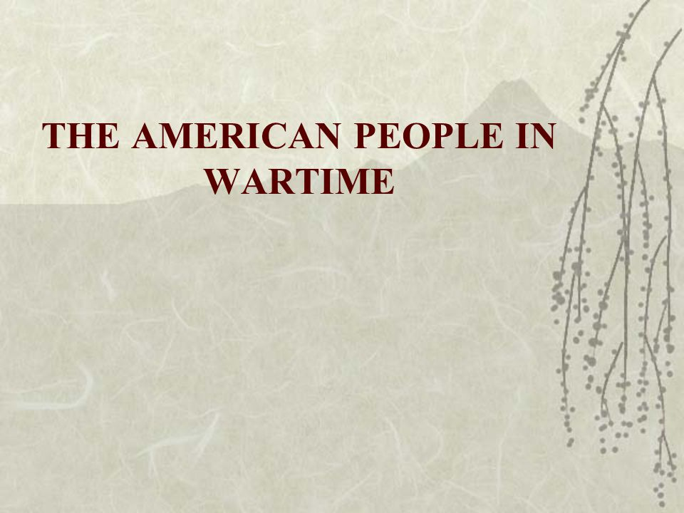 THE AMERICAN PEOPLE IN WARTIME