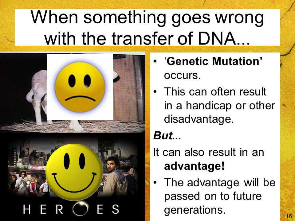 When something goes wrong with the transfer of DNA...