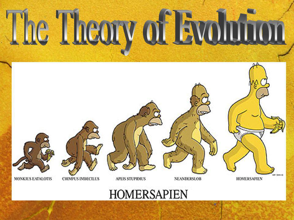 11/06/20143 Copy this into your jotter The Theory of Evolution is the idea that the universe and all life (animal and human) have developed gradually over millions of years.