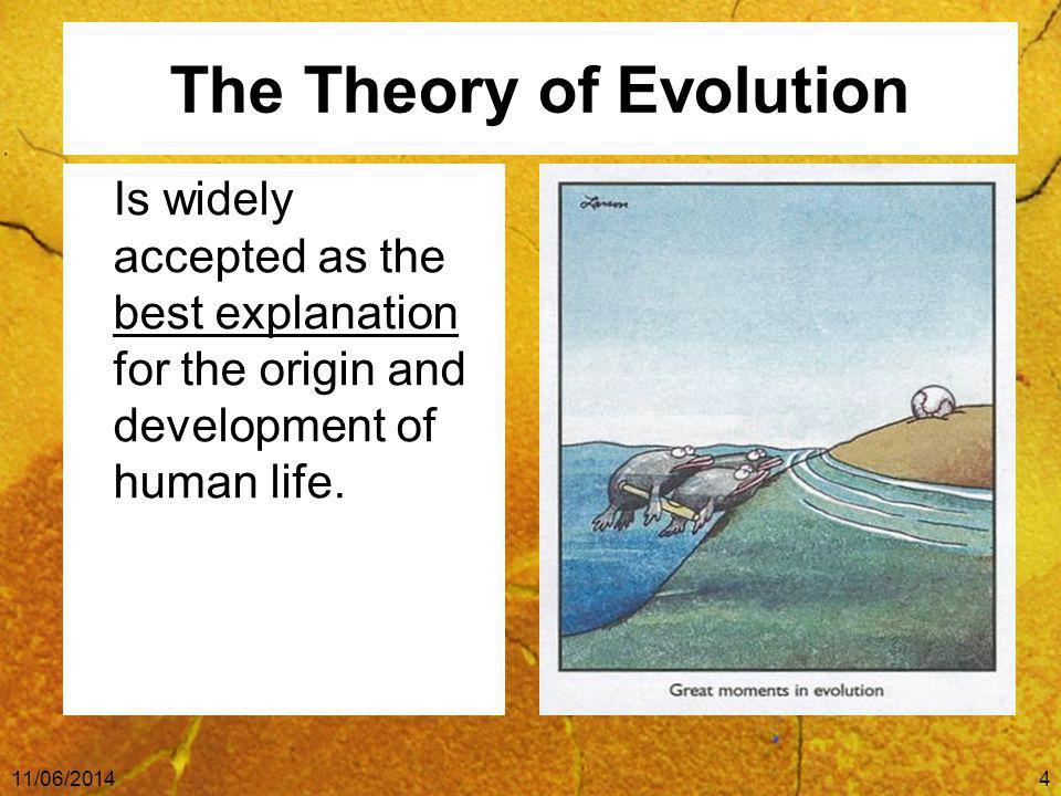 The Theory of Evolution Is widely accepted as the best explanation for the origin and development of human life.