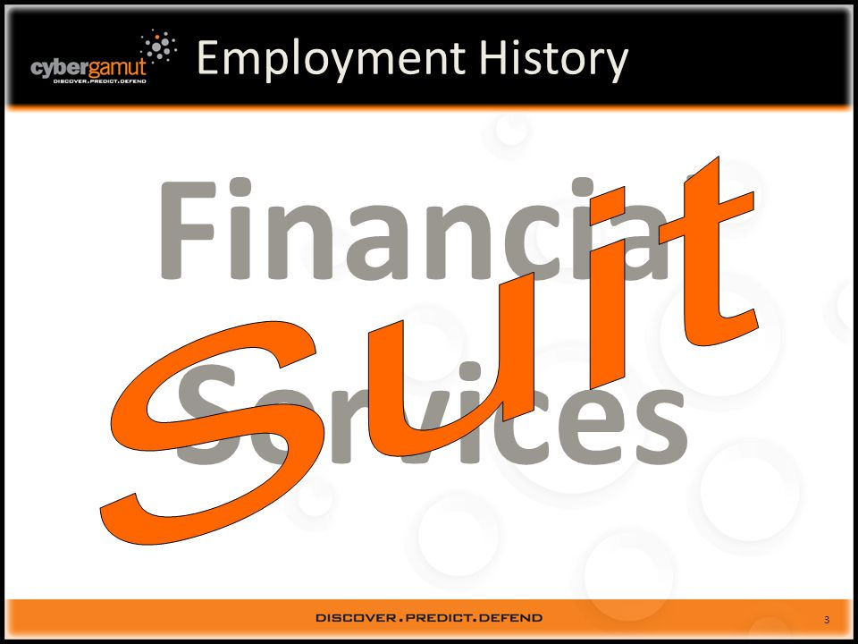 3 Employment History Financial Services