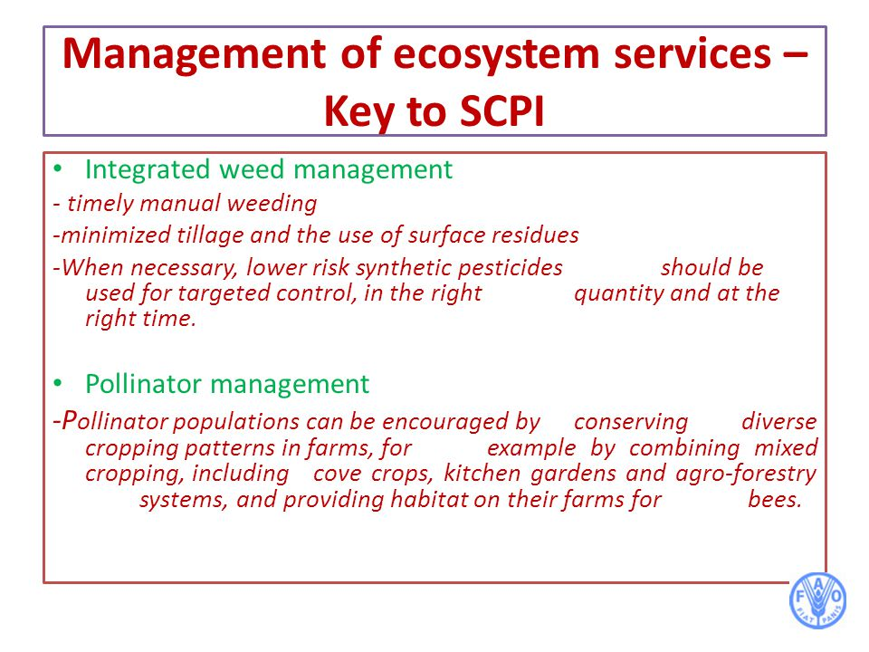 Management of ecosystem services – Key to SCPI Integrated weed management - timely manual weeding -minimized tillage and the use of surface residues -