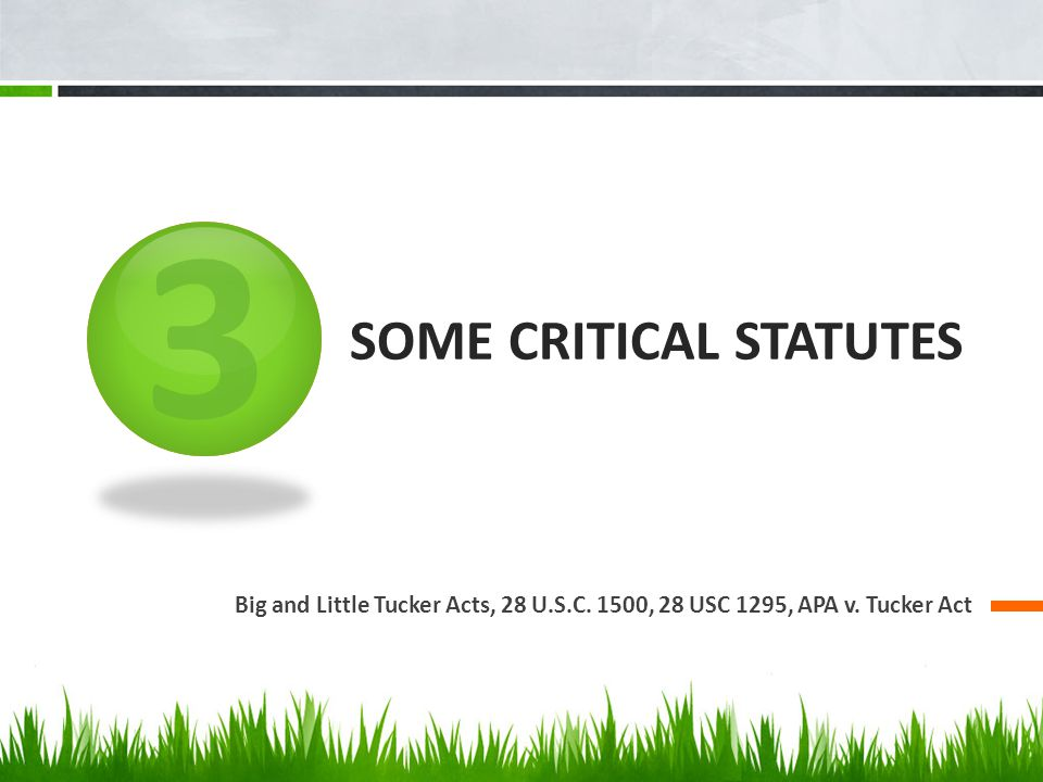 3 SOME CRITICAL STATUTES Big and Little Tucker Acts, 28 U.S.C. 1500, 28 USC 1295, APA v. Tucker Act