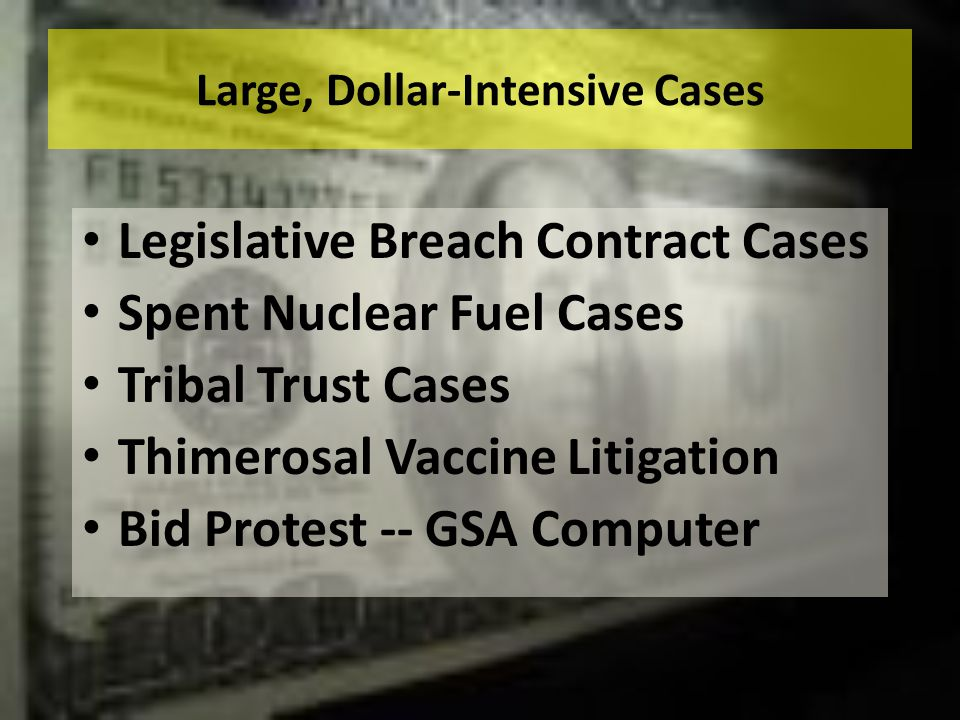 Large, Dollar-Intensive Cases Legislative Breach Contract Cases Spent Nuclear Fuel Cases Tribal Trust Cases Thimerosal Vaccine Litigation Bid Protest