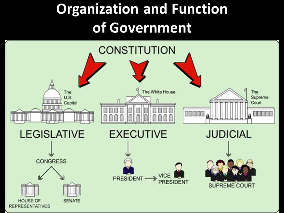 Organization and Function of Government