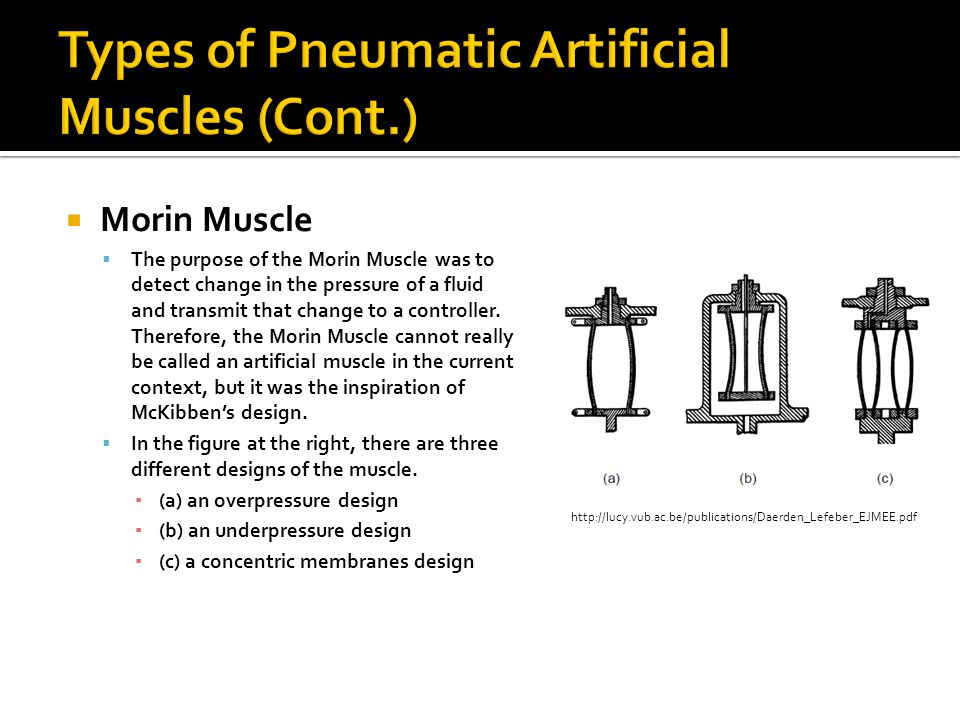 Morin Muscle The purpose of the Morin Muscle was to detect change in the pressure of a fluid and transmit that change to a controller. Therefore, the