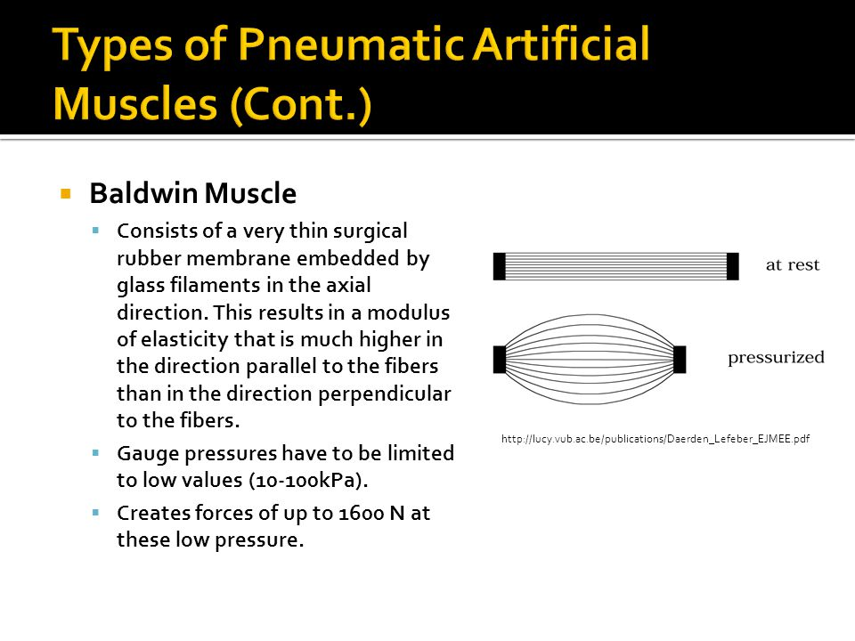 Baldwin Muscle Consists of a very thin surgical rubber membrane embedded by glass filaments in the axial direction. This results in a modulus of elast