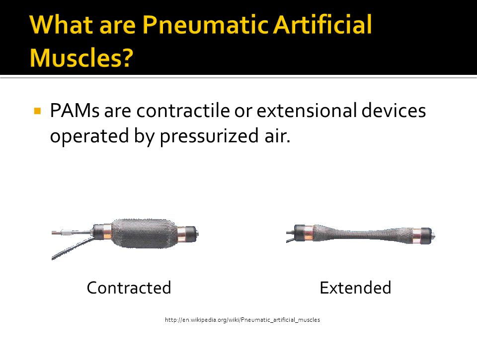 PAMs were first developed in the 1950s for use in artificial limbs.