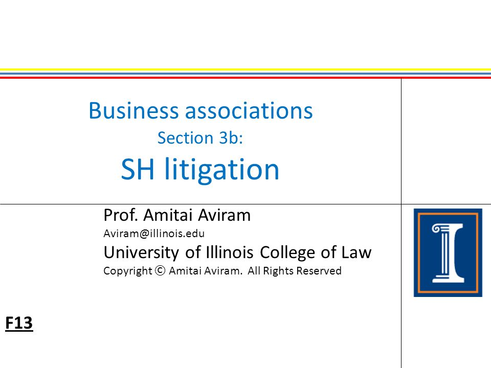 Business associations Section 3b: SH litigation Prof.