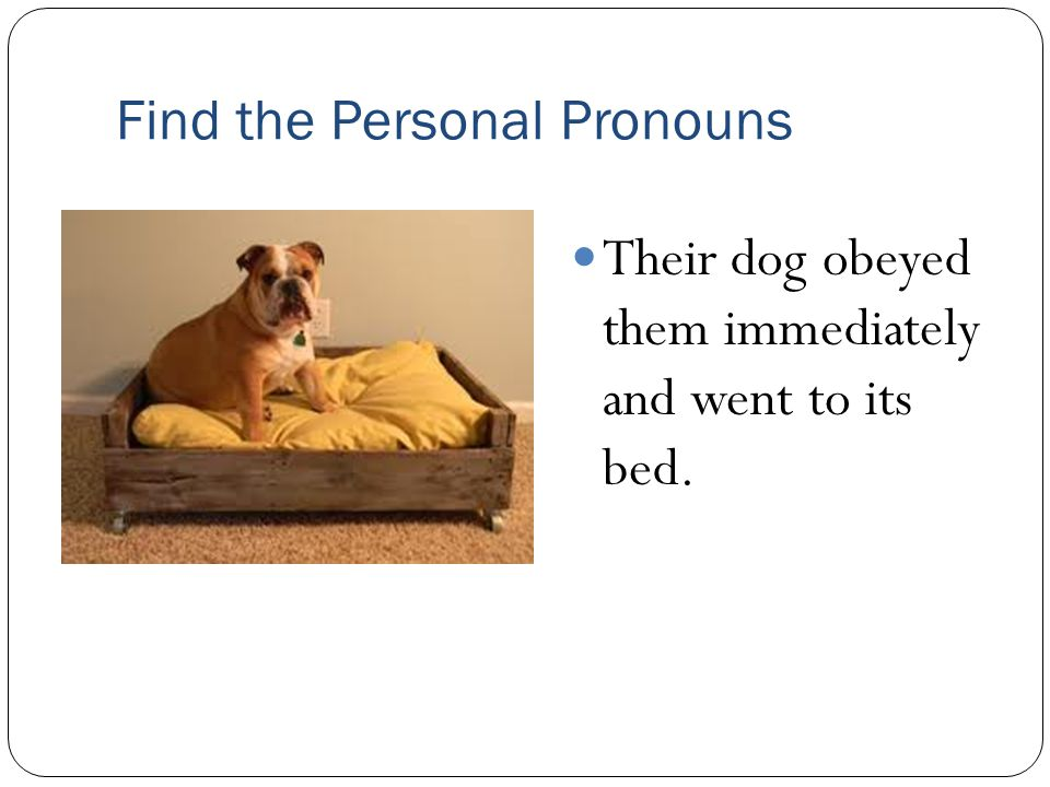 Find the Personal Pronouns Their dog obeyed them immediately and went to its bed.